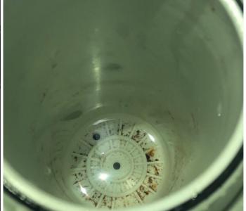 网友投诉海尔净水机:水烧开后水垢非常多 机器里都是泥